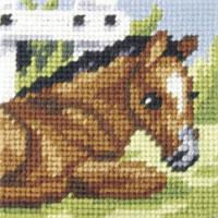 Tiny Foal  - My First Embroidery Kit - 16x16cm approx