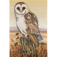 Owl Horizon Counted Cross Stitch Kit 30x20cm